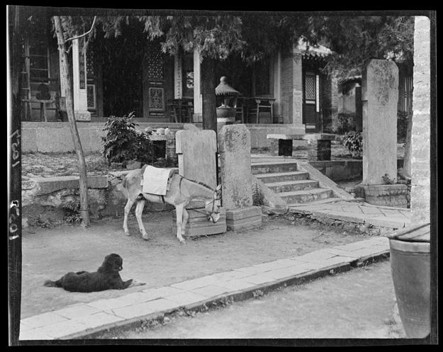 1917-1919 秦皇岛山海关