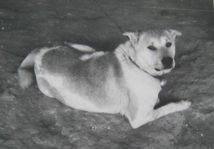 1970s