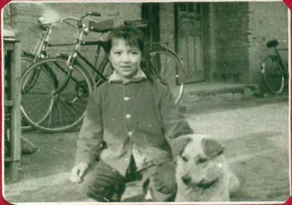 1968 江南