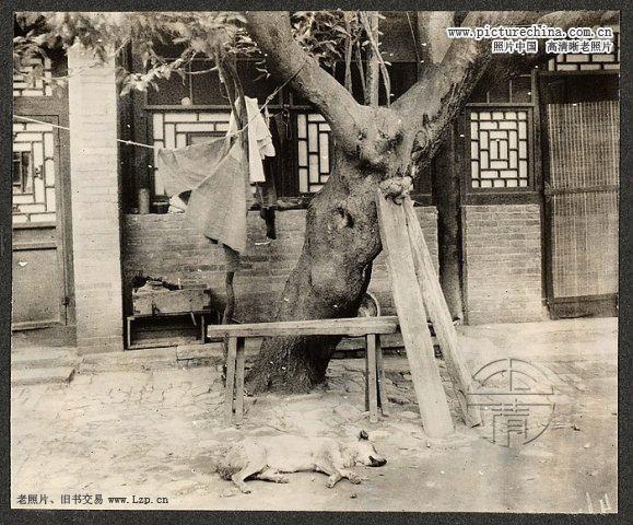 1913 北京